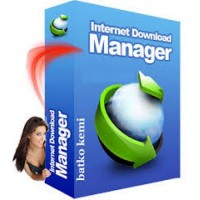 Internet Download Manager 1 Year